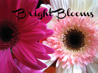 Bright Blooms Image